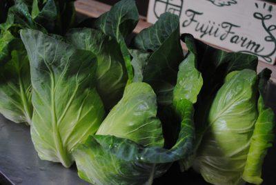 6月8日(金)お届けの野菜セット