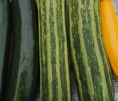 6月29日(金)お届けの野菜セット