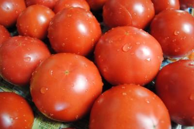 8月7日(火)お届けの野菜セット