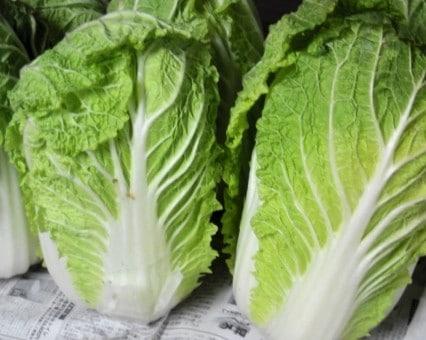 12月11日(火)お届けの野菜セット