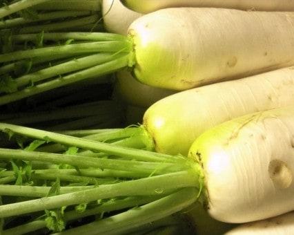 6月21日(金)お届けの野菜セット