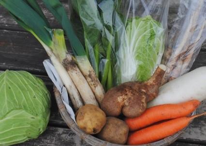 12月27日(金)お届けの野菜セット