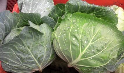 7月5日(金)お届けの野菜セット