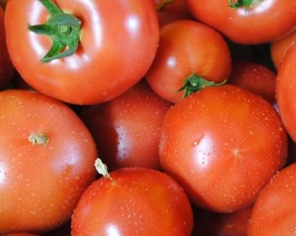 8月2日(金)お届けの野菜セット